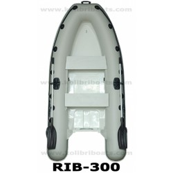 RIB-300